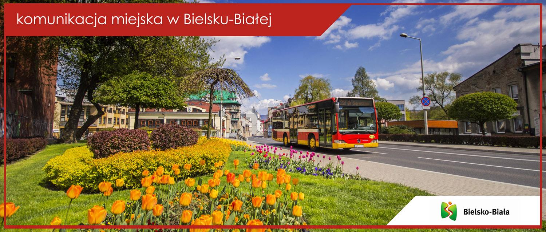 Autobus linii nr 22 na ul. Stojałowskiego.