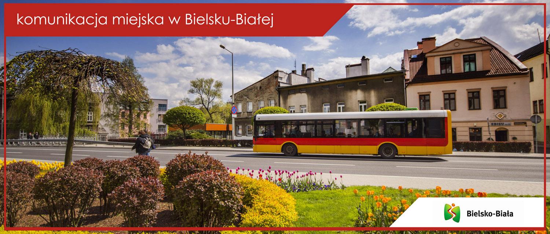 Autobus linii nr 2 na ul. Stojałowskiego.